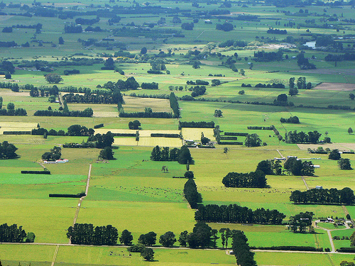 Climate change contributes to rise in farmland value