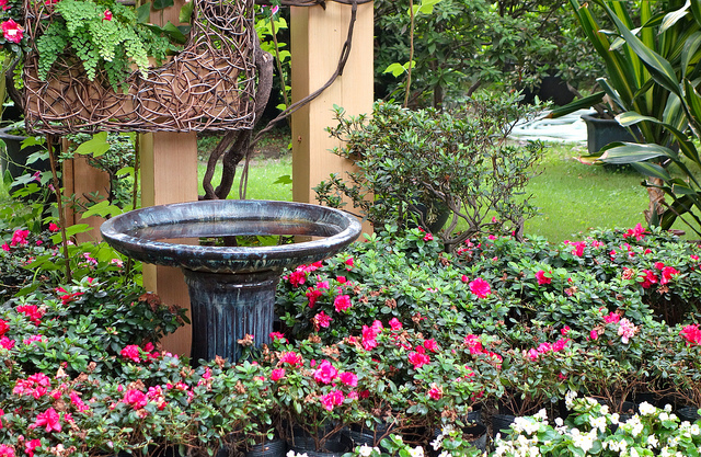 Landscaping: How to Add Value to Your Hom
