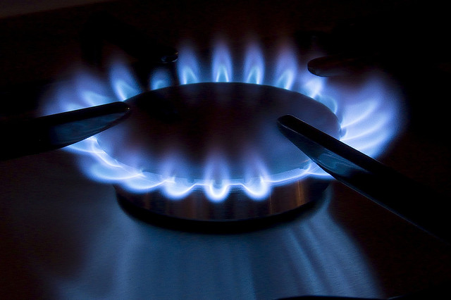 Energy firm profits up, despite price cuts