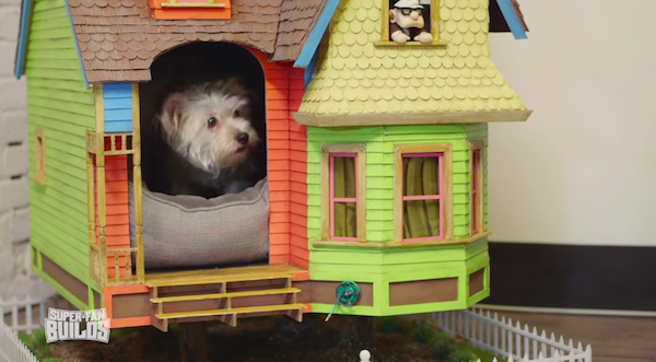 Man builds replica Up house for dog